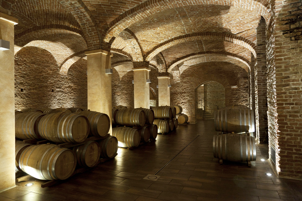 """Le Cattedrali"", Cantine Gancia, Canelli, Langhe, Piemonte, Italy"